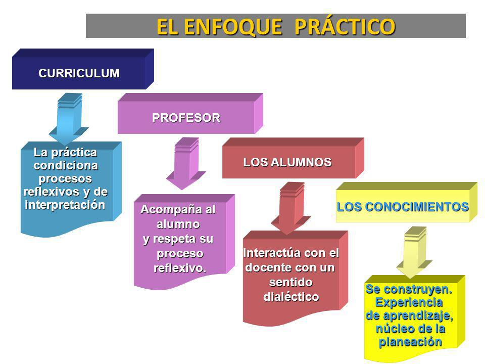 EL ENFOQUE PRÁCTICO CURRICULUM PROFESOR La práctica LOS ALUMNOS