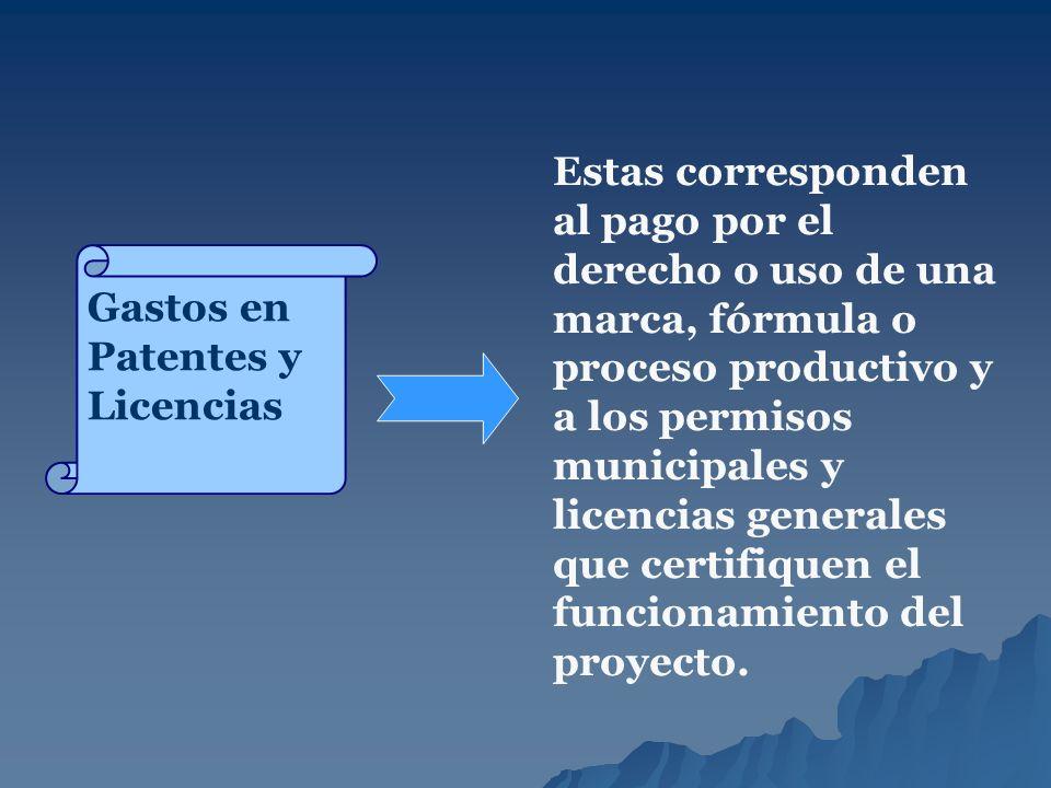 Estas corresponden al pago por el derecho o uso de una marca, fórmula o proceso productivo y a los permisos municipales y licencias generales que certifiquen el funcionamiento del proyecto.