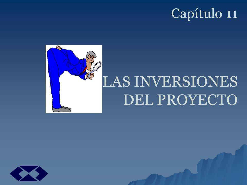 Capítulo 11 LAS INVERSIONES
