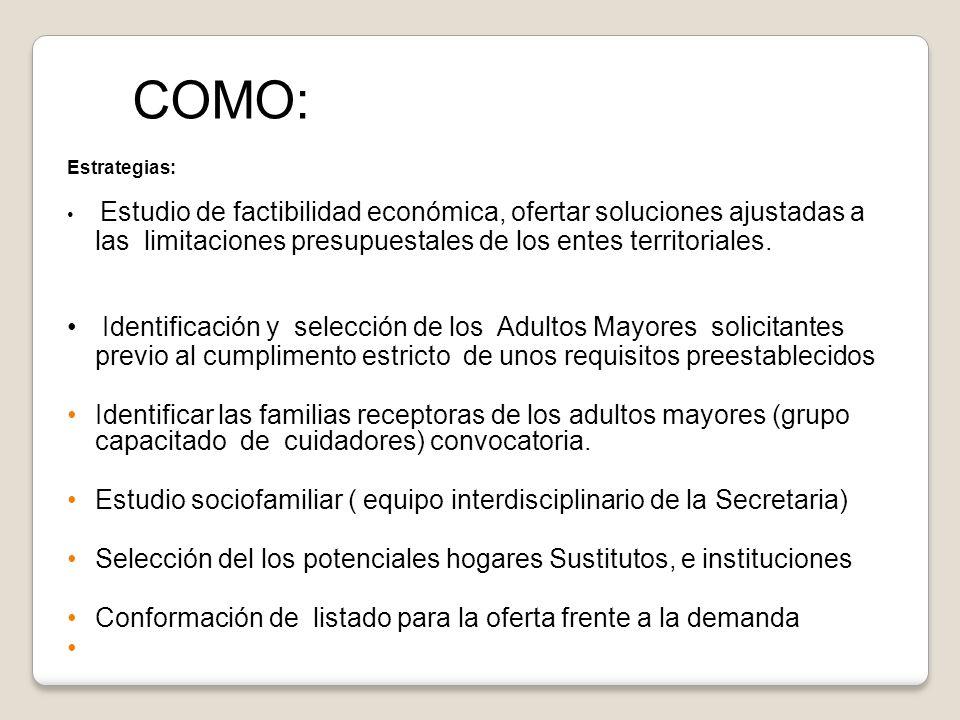COMO: Estrategias: Estudio de factibilidad económica, ofertar soluciones ajustadas a las limitaciones presupuestales de los entes territoriales.