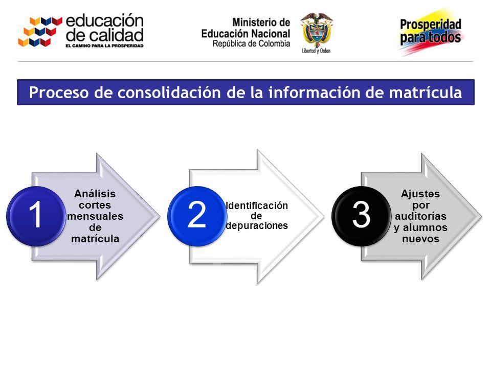 Proceso de consolidación de la información de matrícula