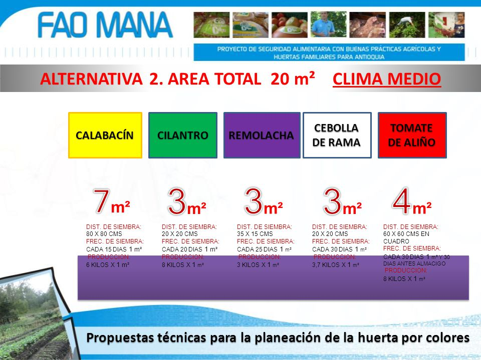 ALTERNATIVA 2. AREA TOTAL 20 m² CLIMA MEDIO