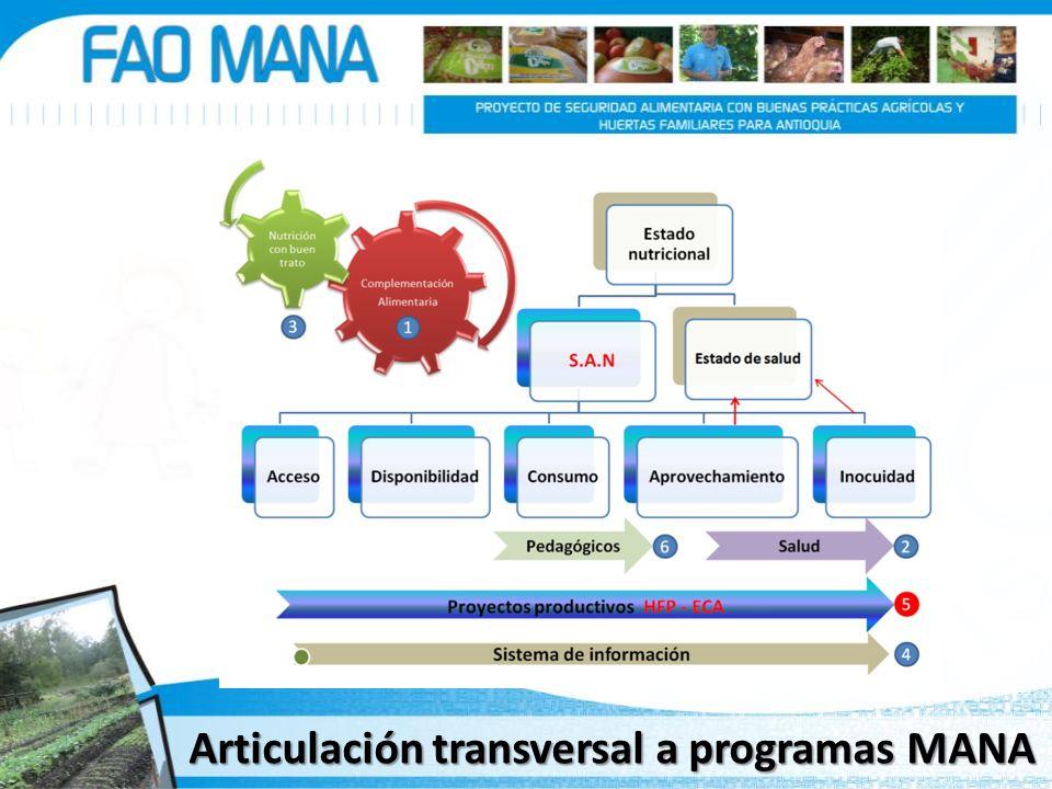Articulación transversal a programas MANA