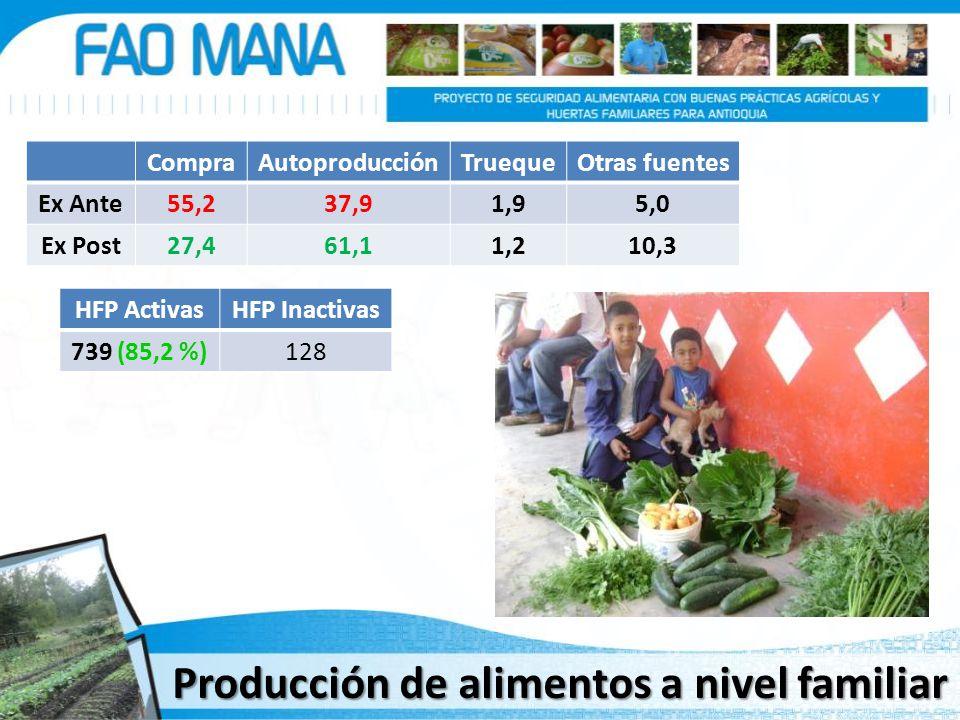 Producción de alimentos a nivel familiar