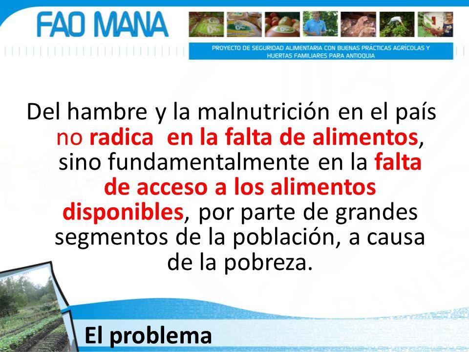 Del hambre y la malnutrición en el país no radica en la falta de alimentos, sino fundamentalmente en la falta de acceso a los alimentos disponibles, por parte de grandes segmentos de la población, a causa de la pobreza.