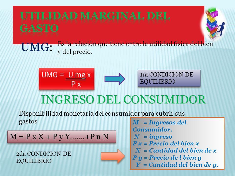 INGRESO DEL CONSUMIDOR