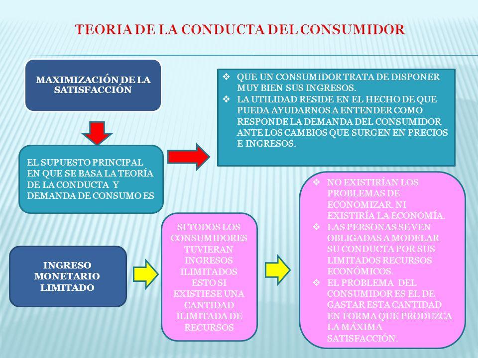 TEORIA DE LA CONDUCTA DEL CONSUMIDOR
