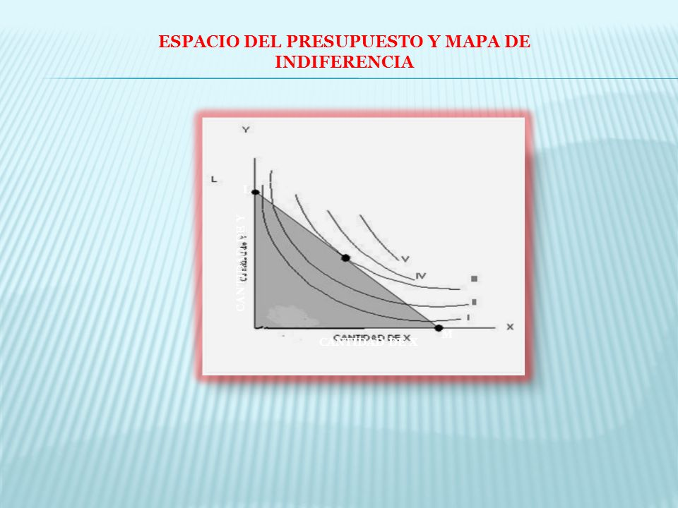 ESPACIO DEL PRESUPUESTO Y MAPA DE INDIFERENCIA