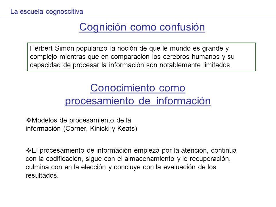 Cognición como confusión