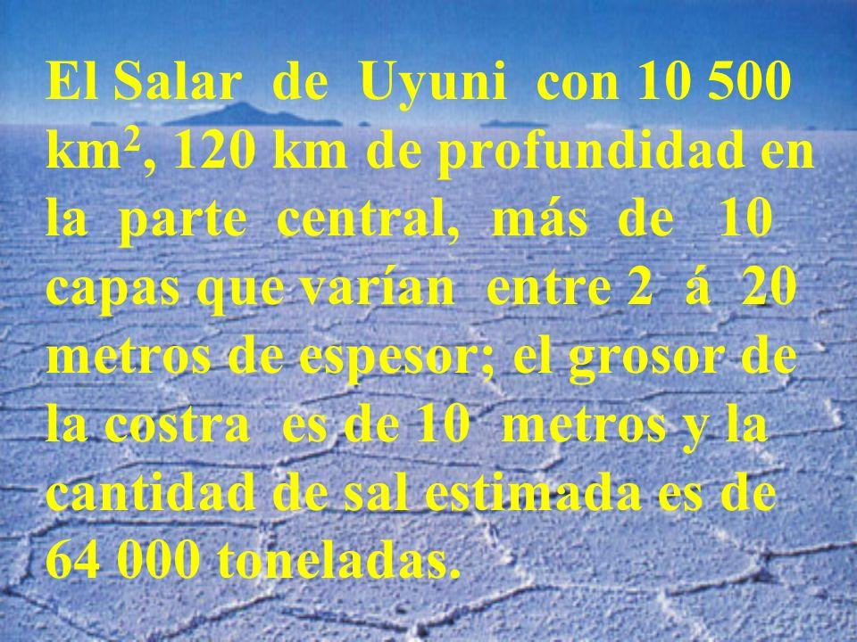 El Salar de Uyuni con 10 500 km2, 120 km de profundidad en la parte central, más de 10 capas que varían entre 2 á 20 metros de espesor; el grosor de la costra es de 10 metros y la cantidad de sal estimada es de 64 000 toneladas.