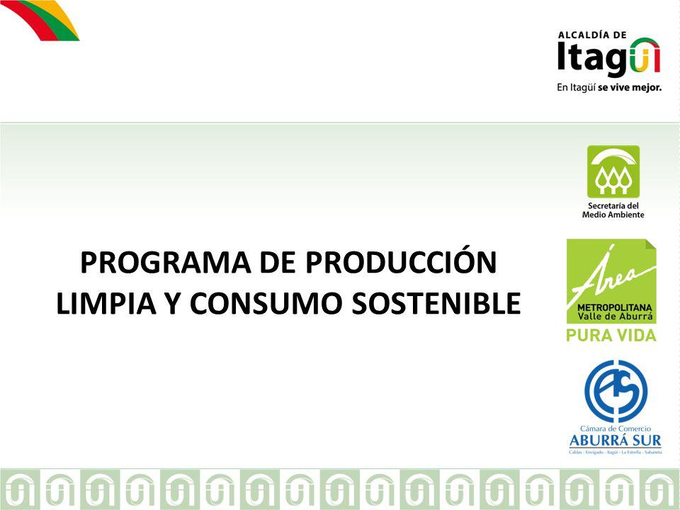 PROGRAMA DE PRODUCCIÓN LIMPIA Y CONSUMO SOSTENIBLE