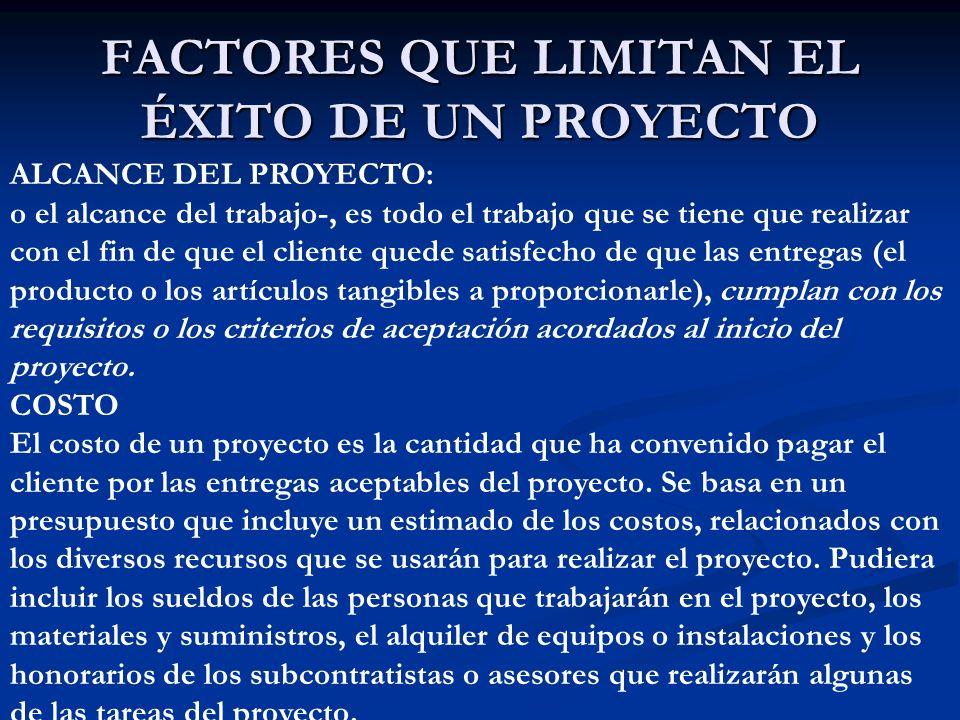 FACTORES QUE LIMITAN EL ÉXITO DE UN PROYECTO