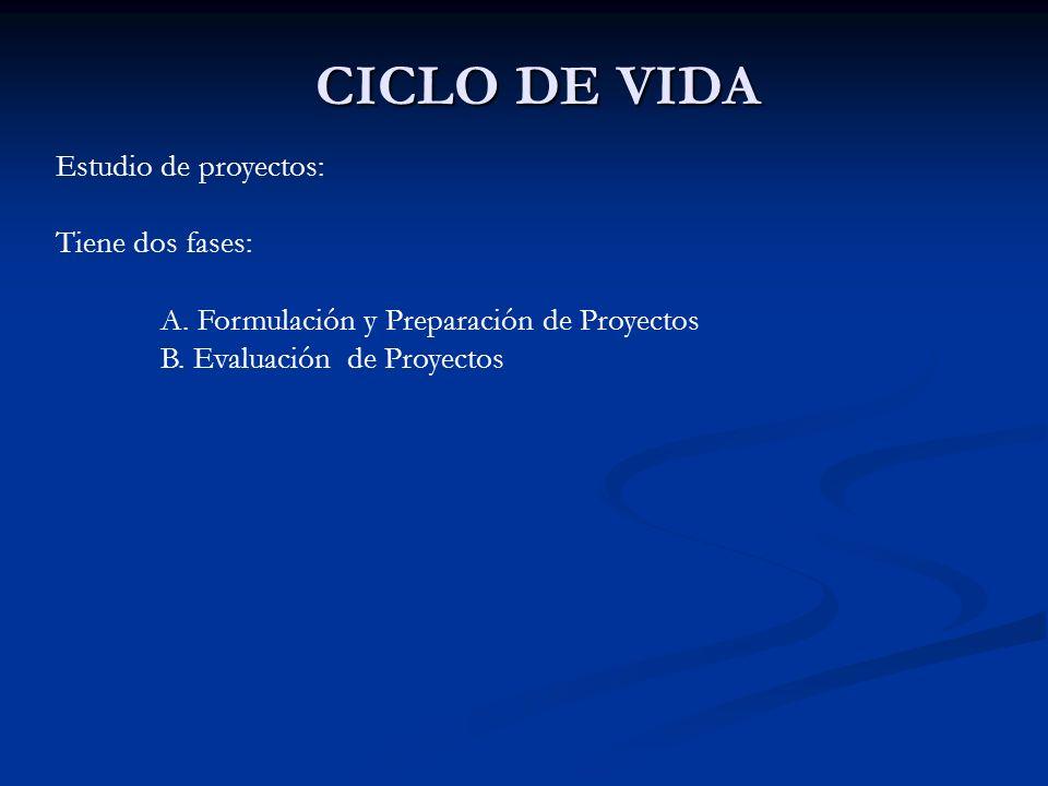 CICLO DE VIDA Estudio de proyectos: Tiene dos fases: