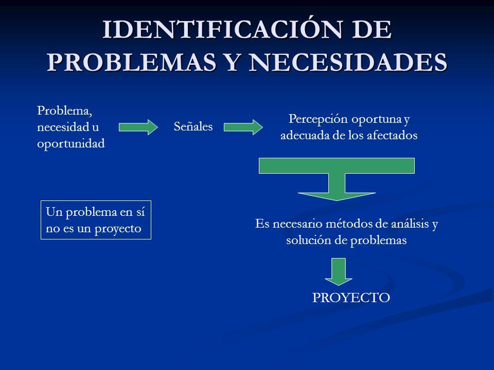 IDENTIFICACIÓN DE PROBLEMAS Y NECESIDADES