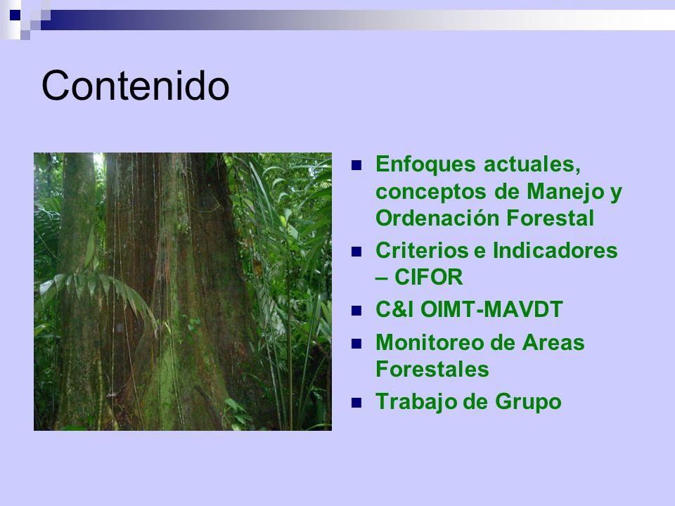 Contenido Enfoques actuales, conceptos de Manejo y Ordenación Forestal