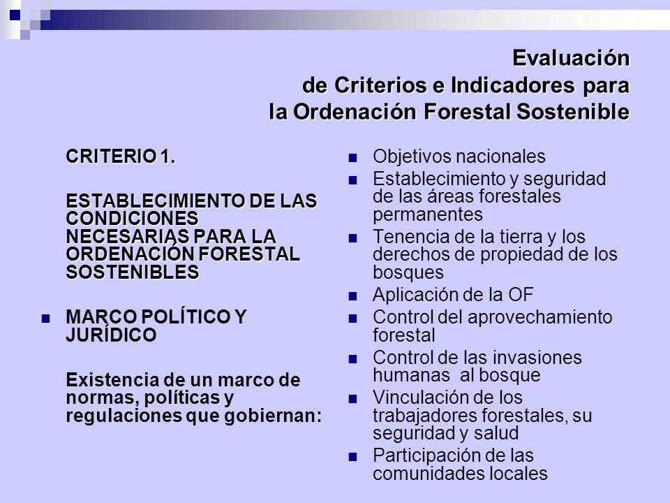 Evaluación de Criterios e Indicadores para la Ordenación Forestal Sostenible