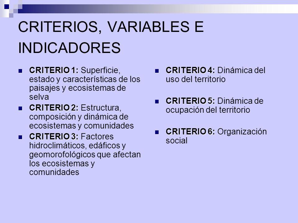 CRITERIOS, VARIABLES E INDICADORES