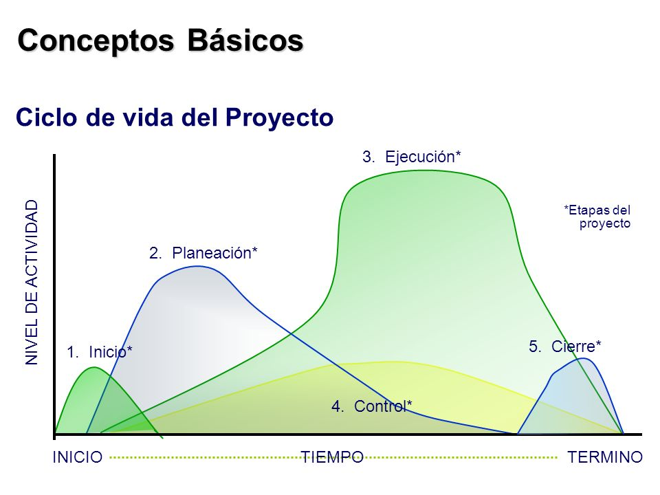 Conceptos Básicos Ciclo de vida del Proyecto 3. Ejecución*