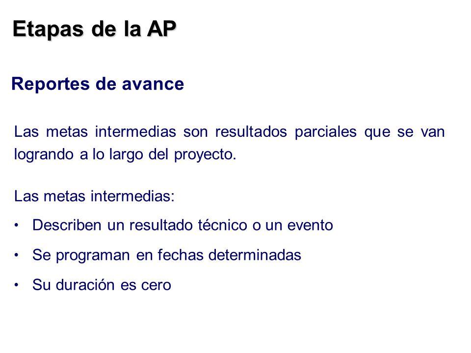 Etapas de la AP Reportes de avance