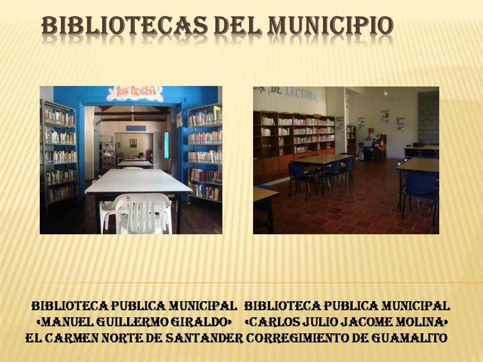 BIBLIOTECAS DEL MUNICIPIO