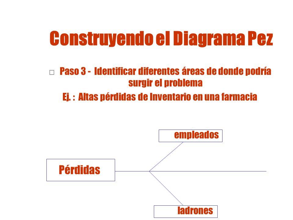 Construyendo el Diagrama Pez