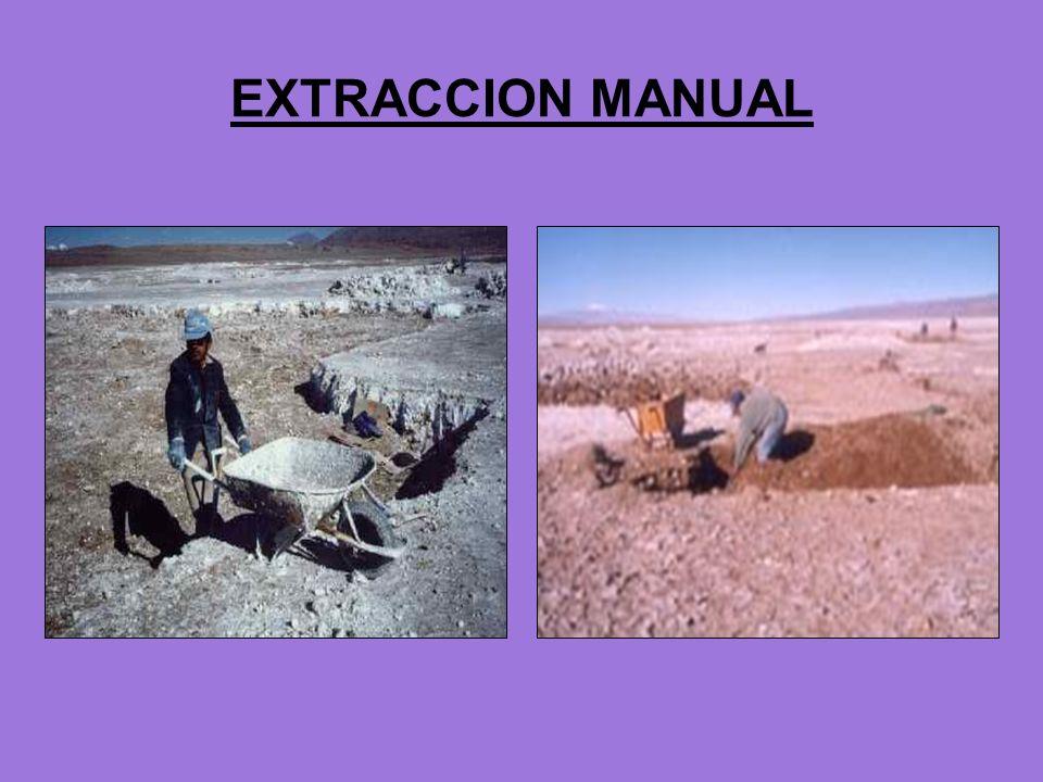EXTRACCION MANUAL