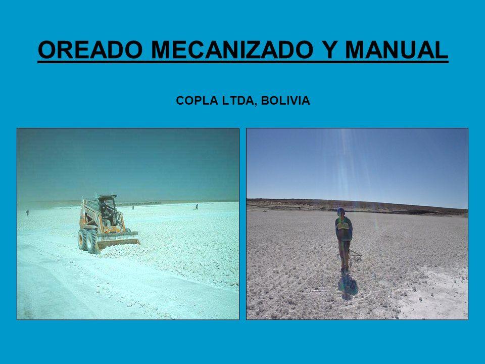 OREADO MECANIZADO Y MANUAL COPLA LTDA, BOLIVIA