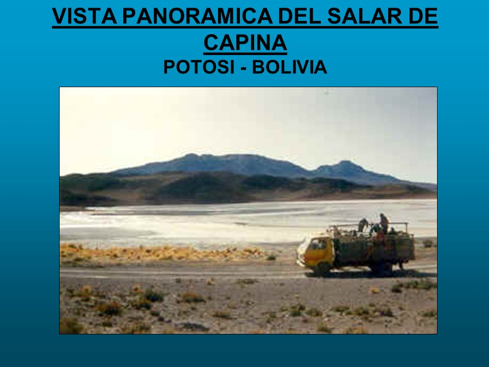VISTA PANORAMICA DEL SALAR DE CAPINA POTOSI - BOLIVIA