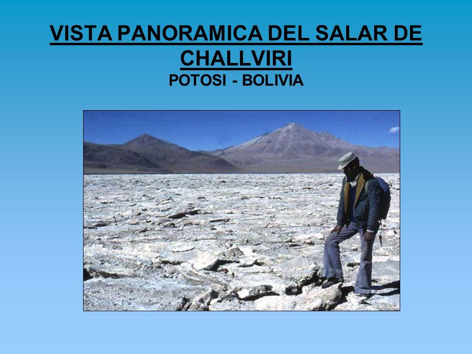 VISTA PANORAMICA DEL SALAR DE CHALLVIRI POTOSI - BOLIVIA