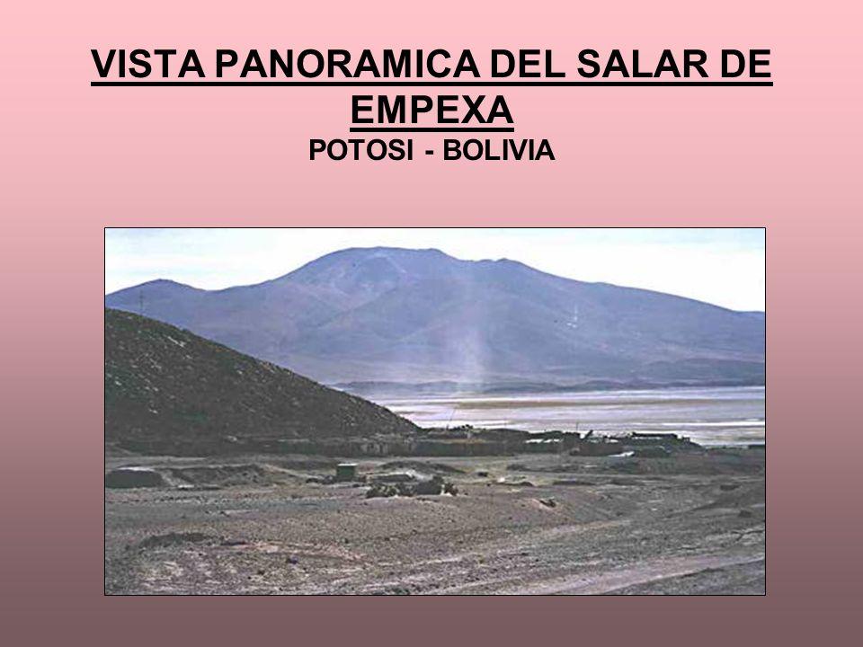 VISTA PANORAMICA DEL SALAR DE EMPEXA POTOSI - BOLIVIA
