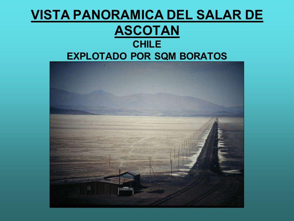 VISTA PANORAMICA DEL SALAR DE ASCOTAN CHILE EXPLOTADO POR SQM BORATOS