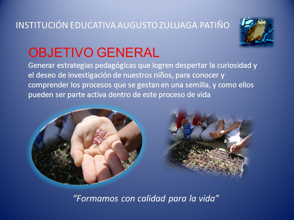 OBJETIVO GENERAL INSTITUCIÓN EDUCATIVA AUGUSTO ZULUAGA PATIÑO