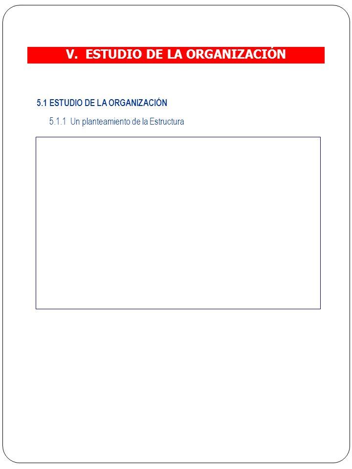 V. ESTUDIO DE LA ORGANIZACIÓN