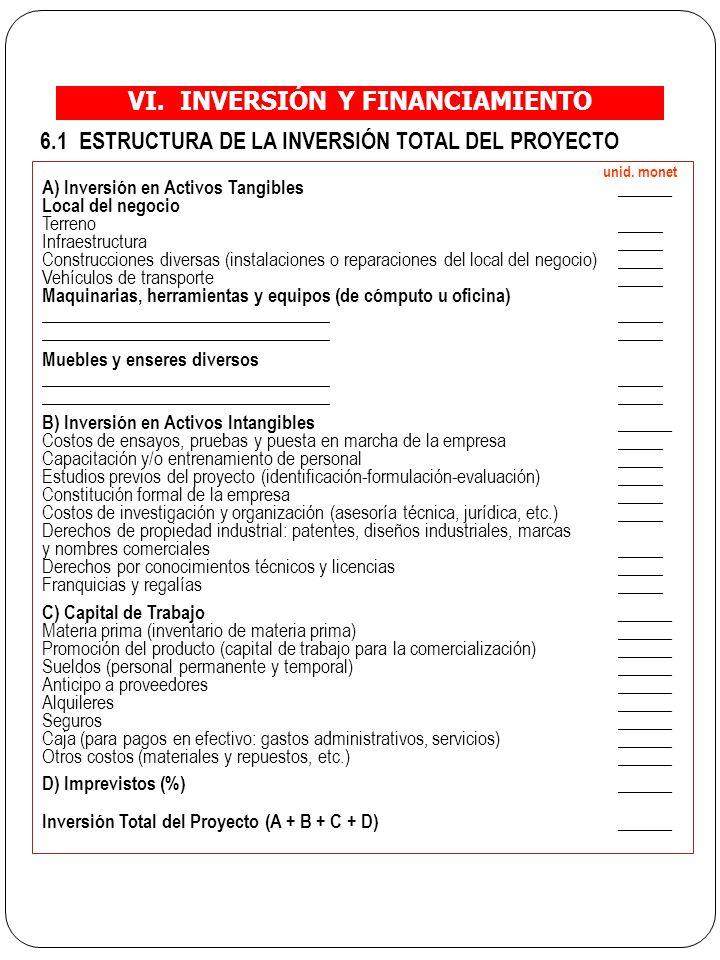 VI. INVERSIÓN Y FINANCIAMIENTO