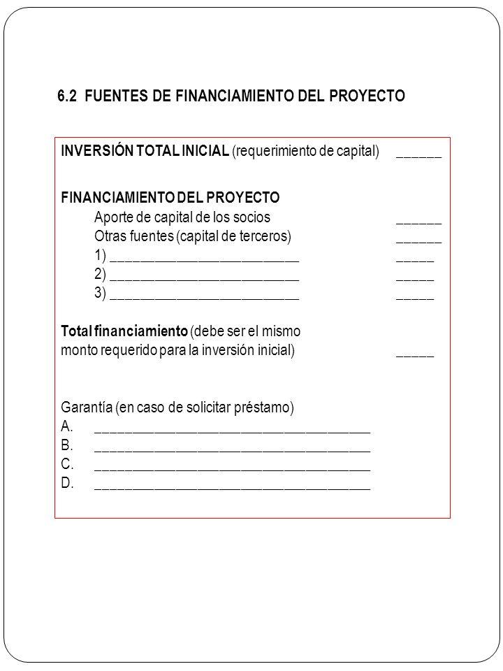 6.2 FUENTES DE FINANCIAMIENTO DEL PROYECTO