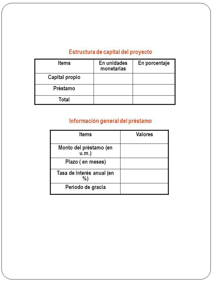 Estructura de capital del proyecto Información general del préstamo
