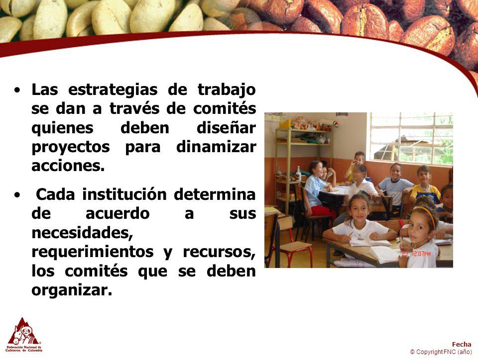 Las estrategias de trabajo se dan a través de comités quienes deben diseñar proyectos para dinamizar acciones.