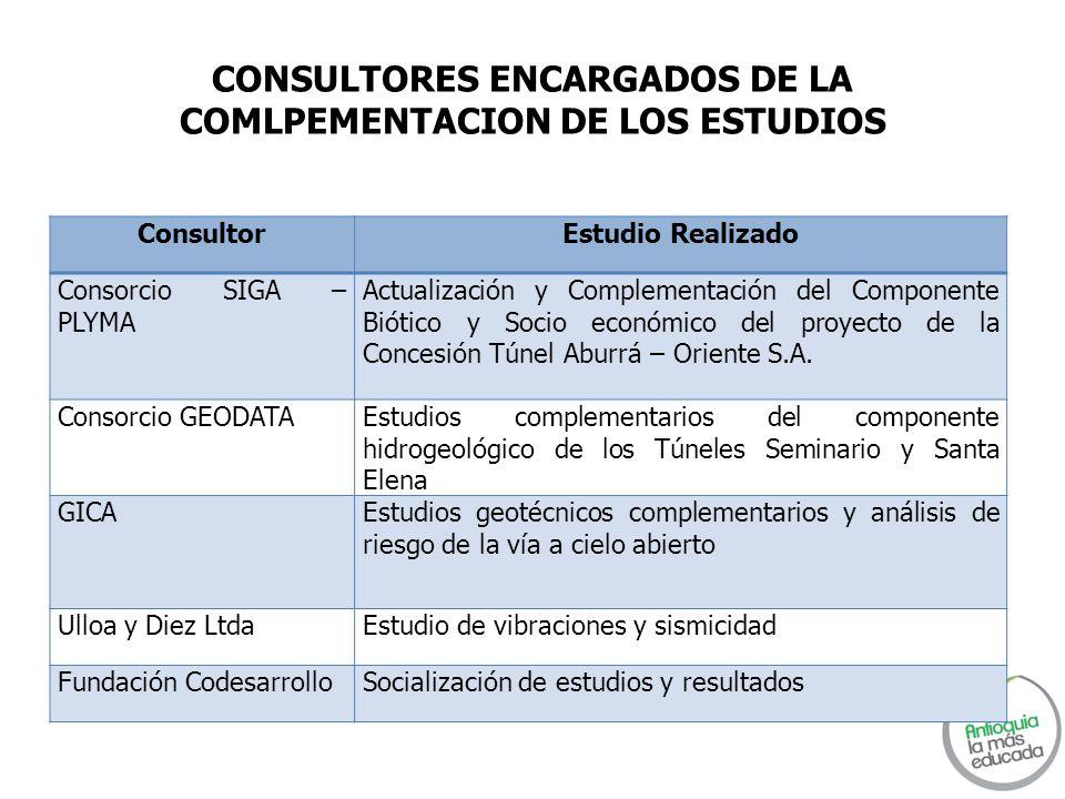 CONSULTORES ENCARGADOS DE LA COMLPEMENTACION DE LOS ESTUDIOS