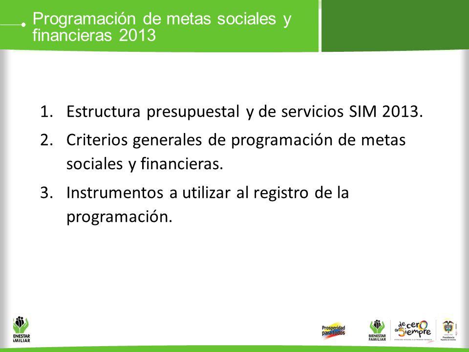 Estructura presupuestal y de servicios SIM 2013.