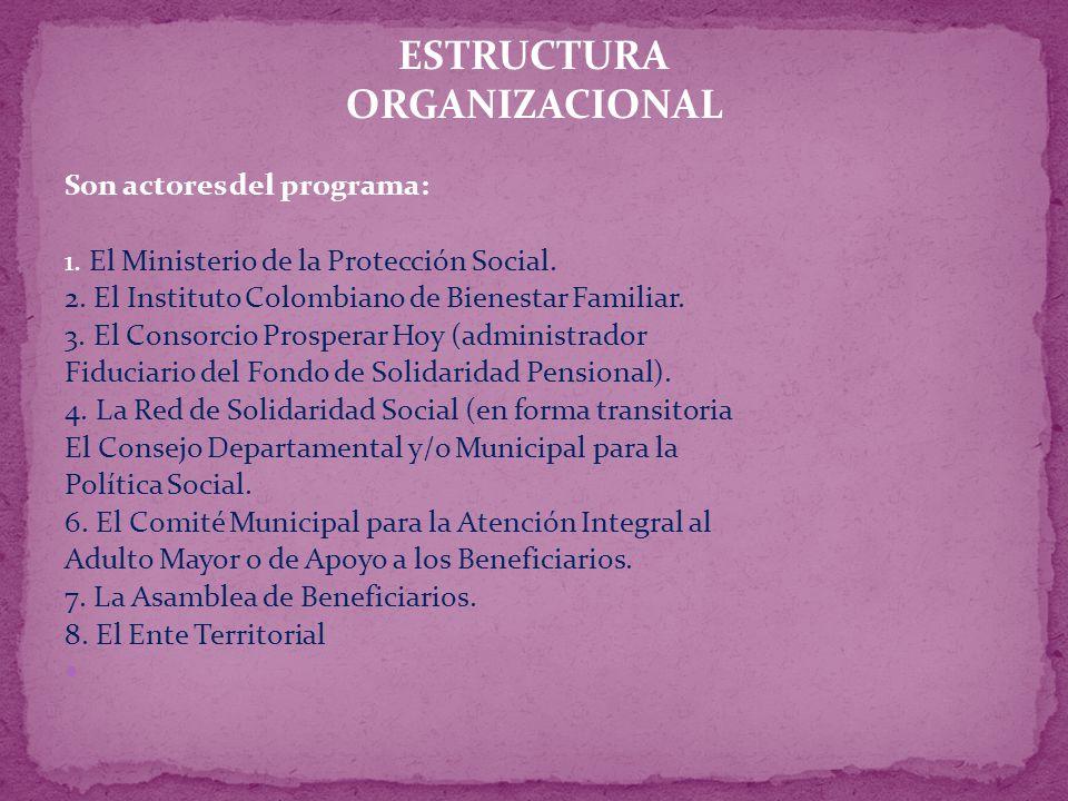 ESTRUCTURA ORGANIZACIONAL Son actores del programa: