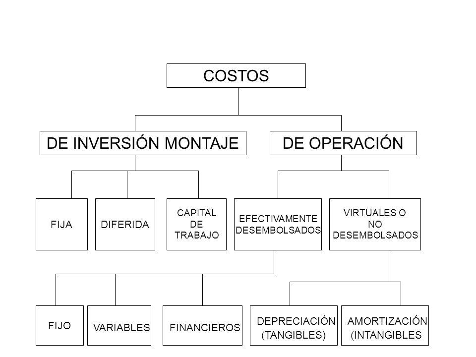 COSTOS DE INVERSIÓN MONTAJE DE OPERACIÓN VARIABLES FINANCIEROS