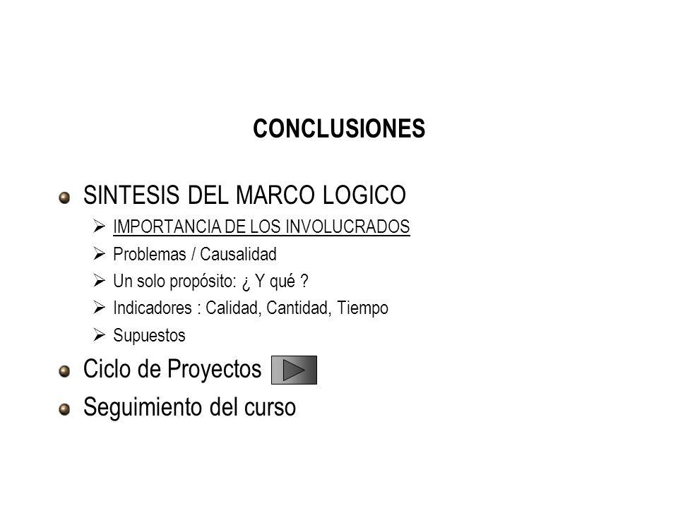SINTESIS DEL MARCO LOGICO