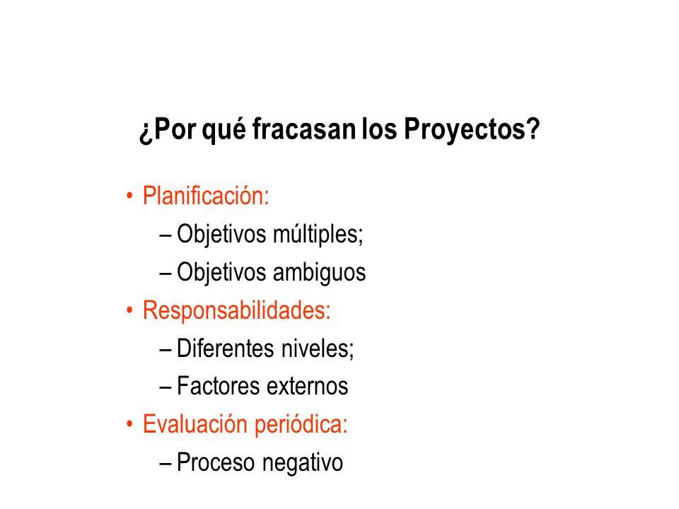 ¿Por qué fracasan los Proyectos