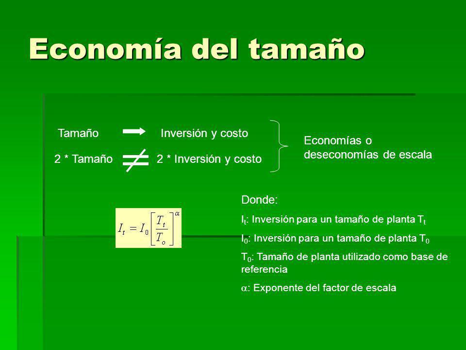 Economía del tamaño Tamaño Inversión y costo