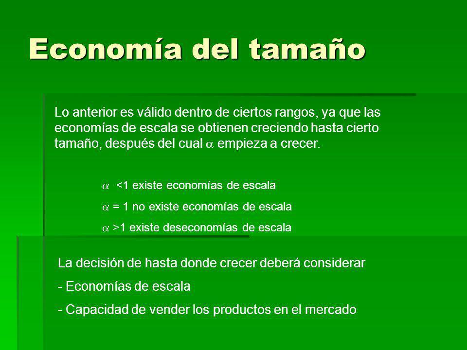 Economía del tamaño