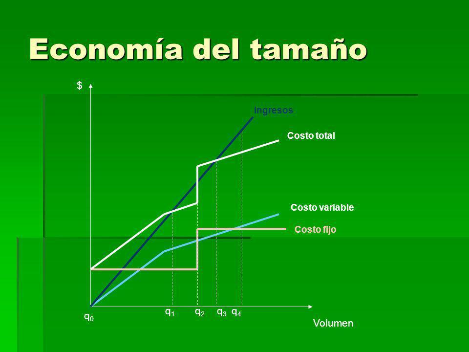 Economía del tamaño $ q1 q2 q3 q4 q0 Volumen Ingresos Costo total