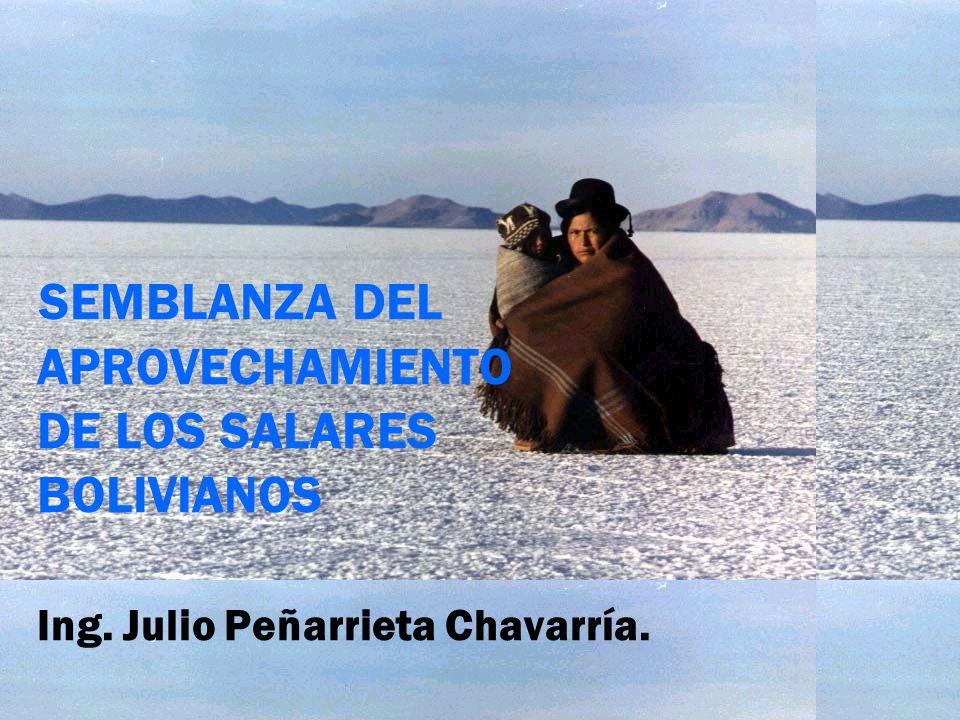 SEMBLANZA DEL APROVECHAMIENTO DE LOS SALARES BOLIVIANOS Ing