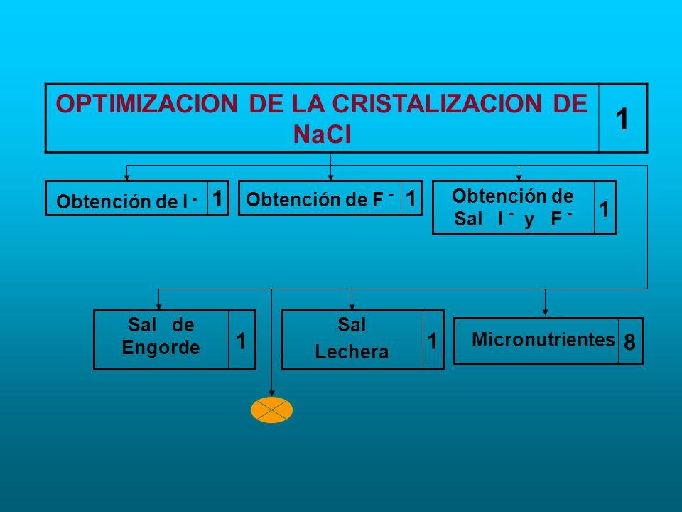 OPTIMIZACION DE LA CRISTALIZACION DE NaCl
