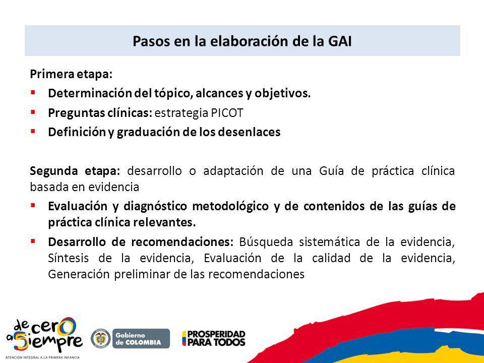 Pasos en la elaboración de la GAI