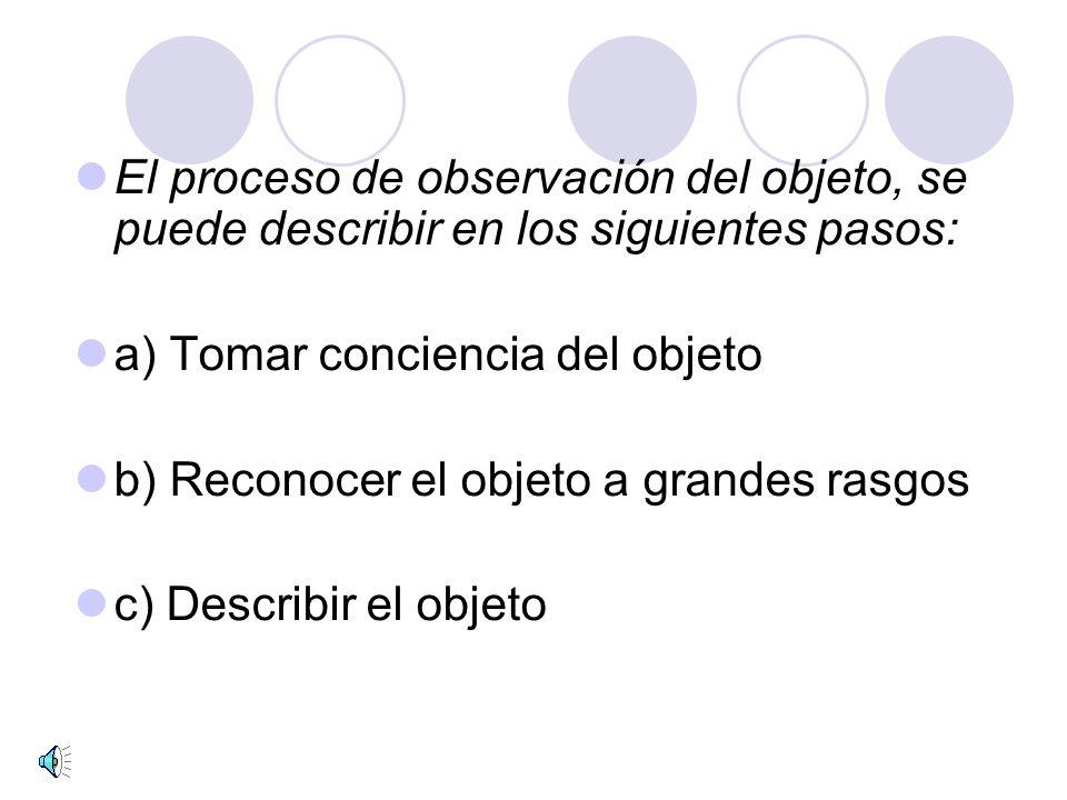 El proceso de observación del objeto, se puede describir en los siguientes pasos: